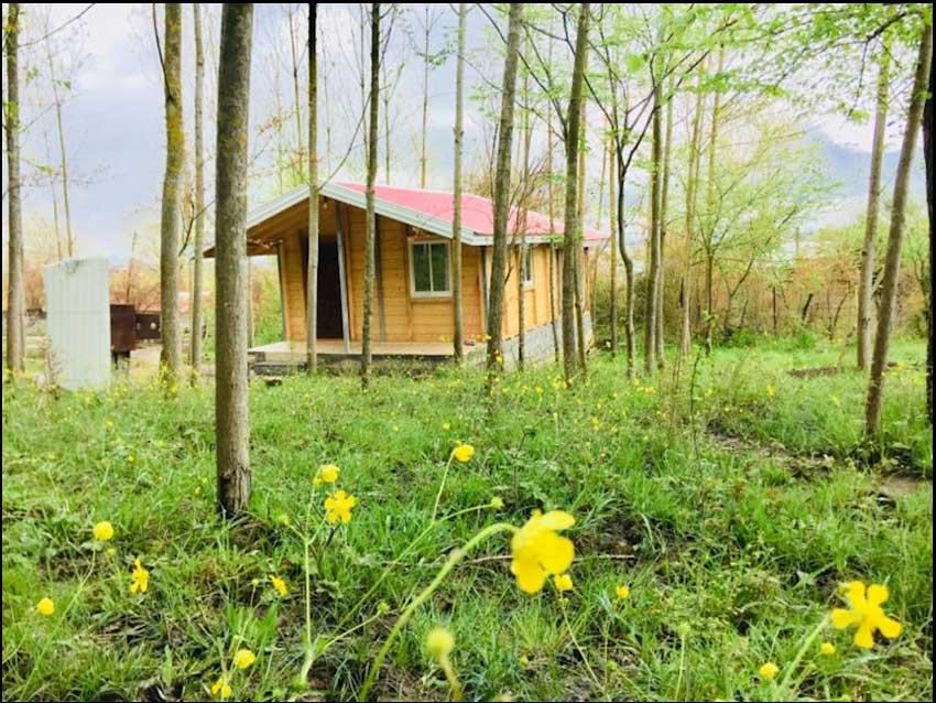 کلبه یک خوابه جنگلی ماسال