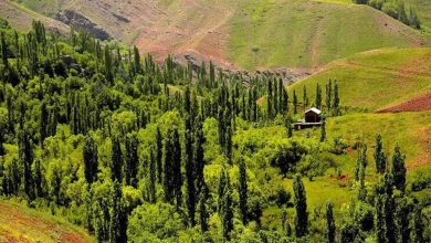 Photo of معرفی زیباترین ییلاق های اطراف تهران