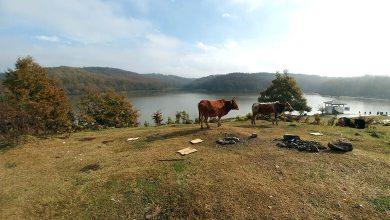 Photo of سقالکسار و دریاچه رویاییش، مقصدی با دیدنیهای فراوان!