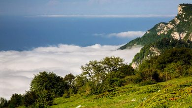 Photo of جاهای دیدنی گرگان؛ از دل سبز طبیعتش تا قلب تاریخ بینظیرش!